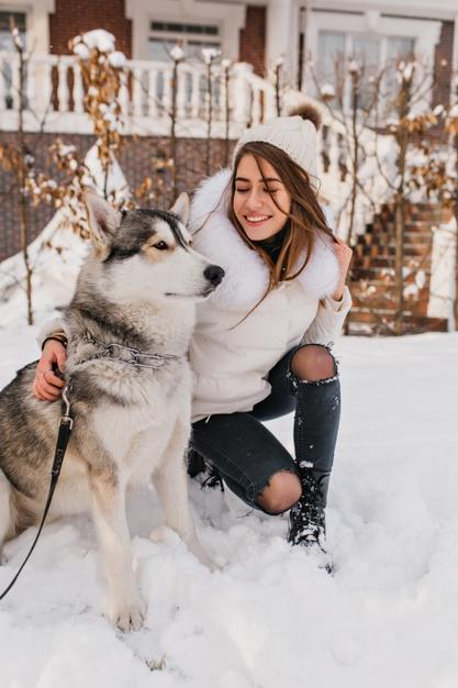 pas na snijegu njega sapa