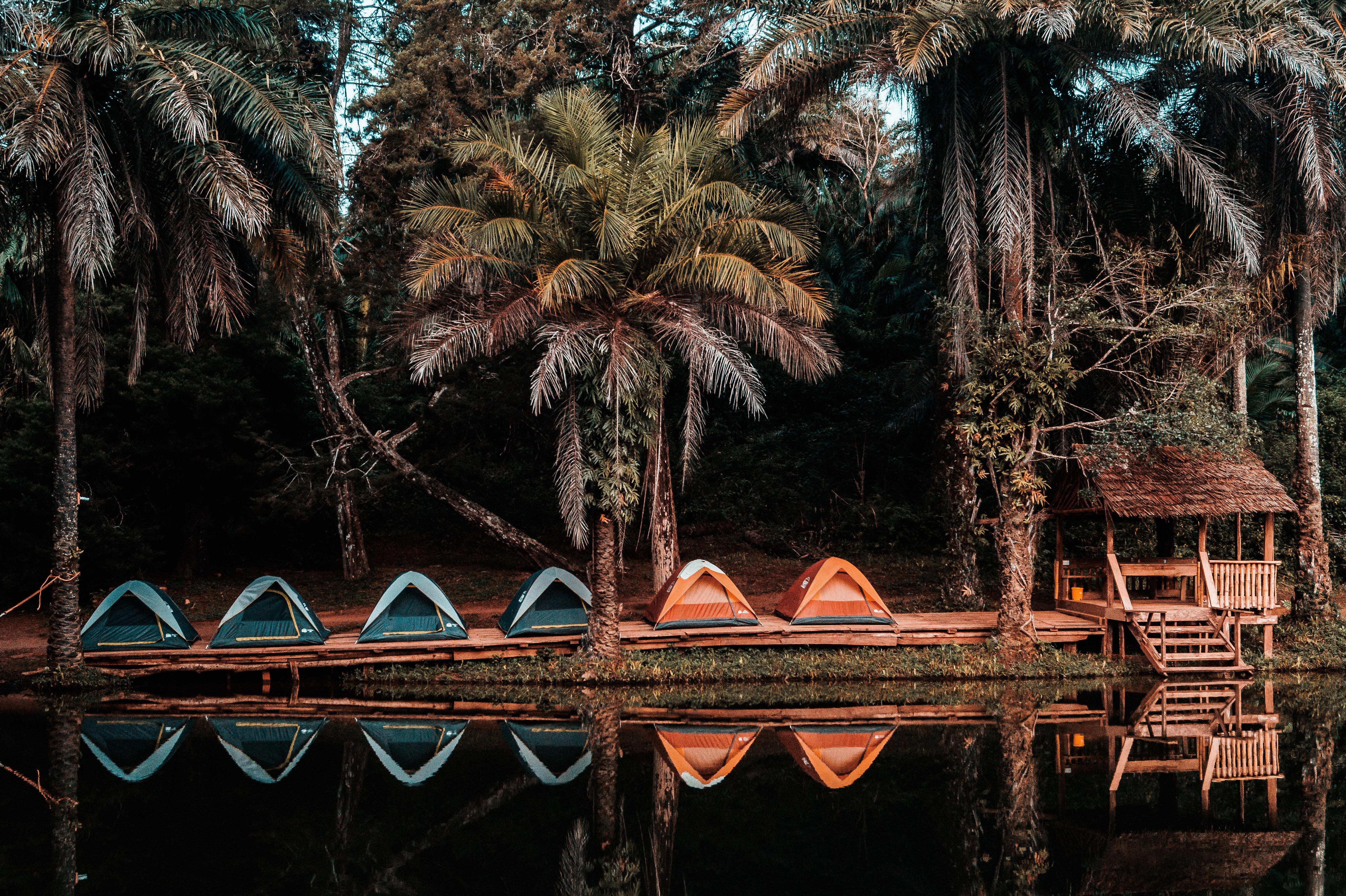 kampiranje u divljini tanzanije