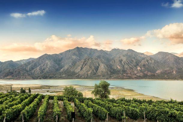 Argentina-vinogradi planine