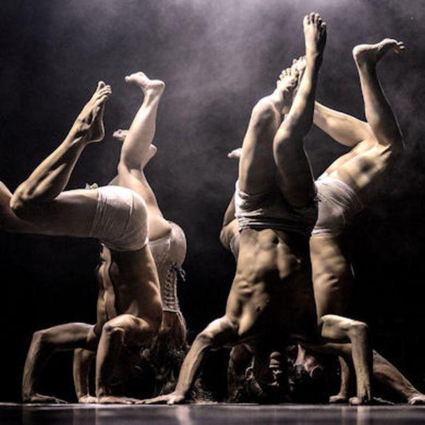 ples-predstava-1