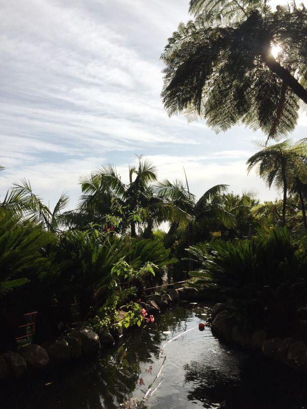 Funchal botanicki vrt