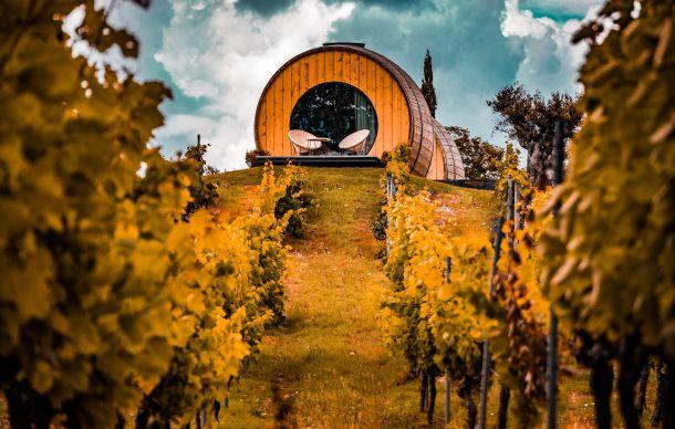 vina otoka madeira